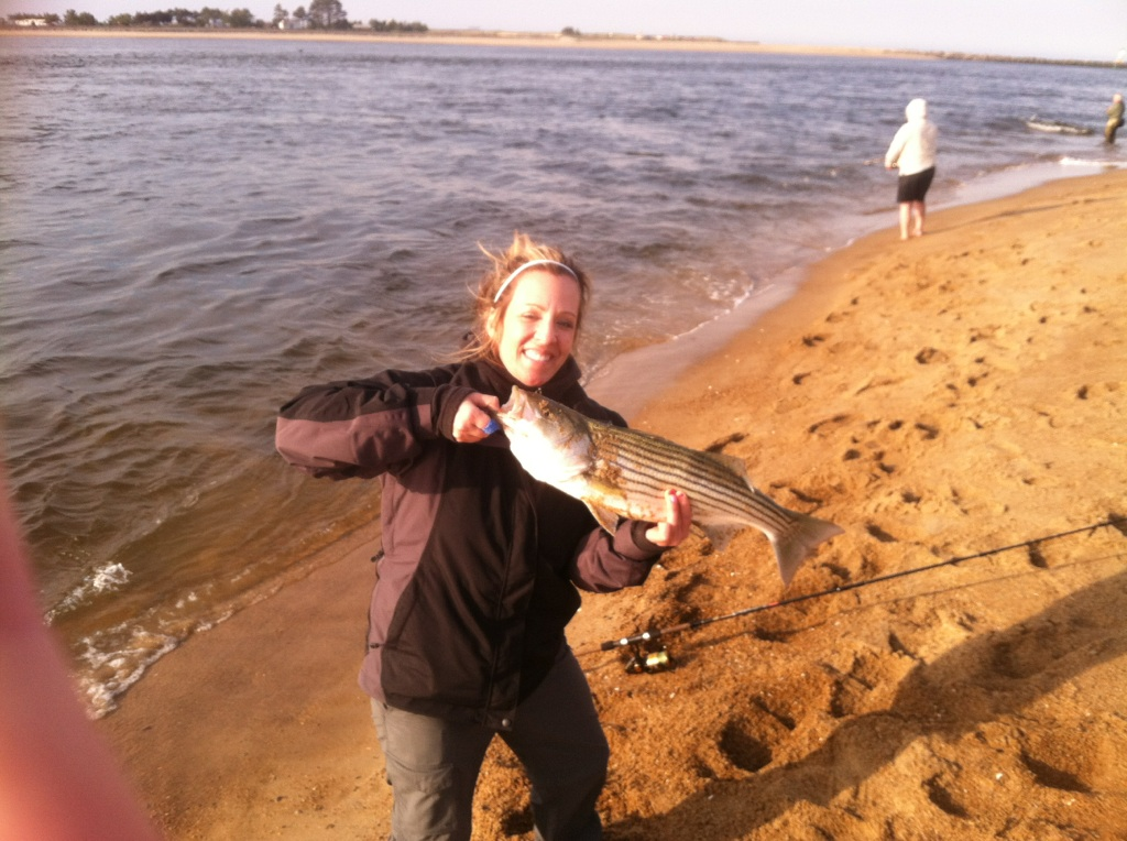 Surfland bait and tackle plum island fishing love this for Island fishing tackle