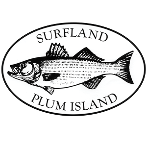 Surfland bait and tackle plum island fishing teddy for Island fishing tackle