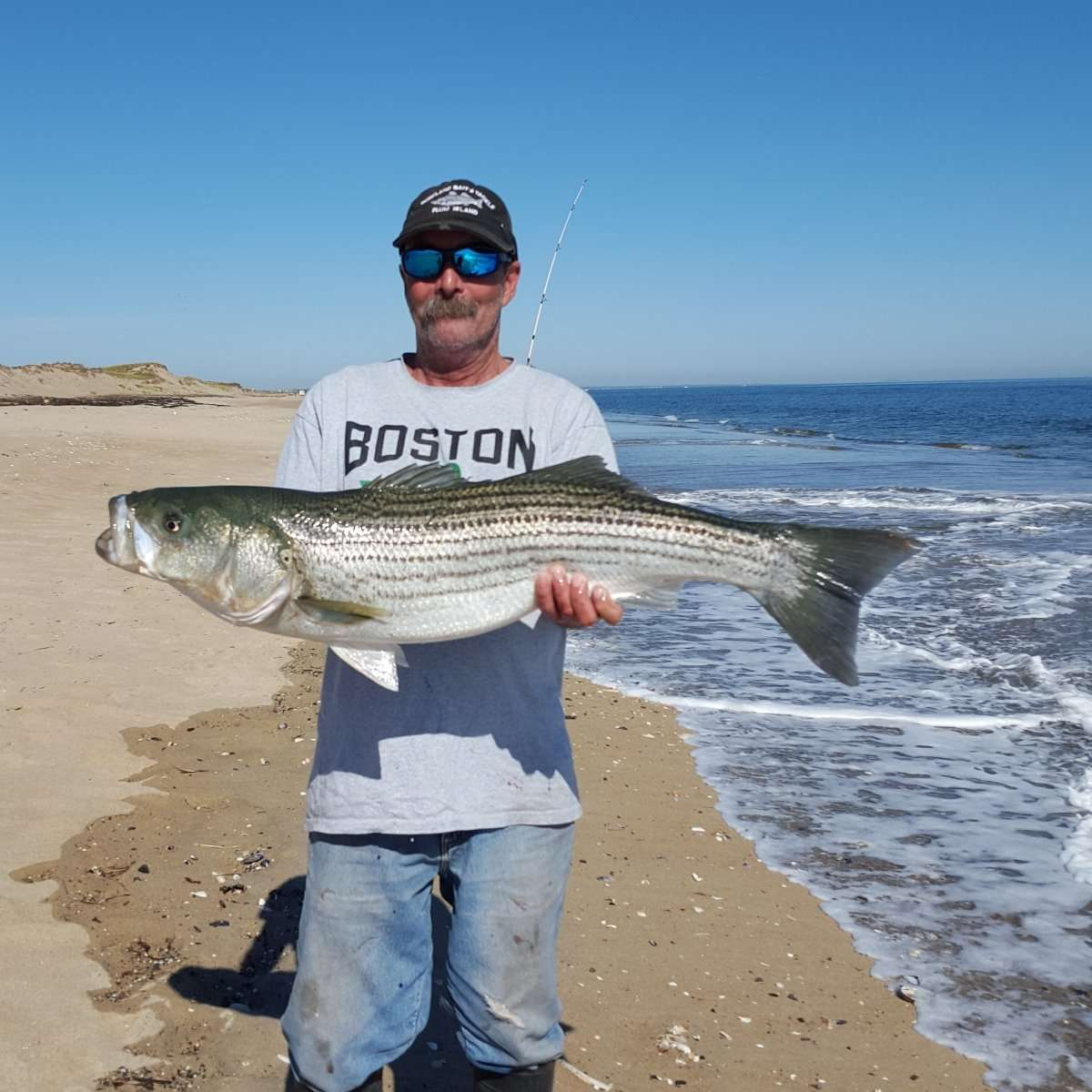 Surfland bait and tackle plum island fishing murph for Murphy s hook house fishing report