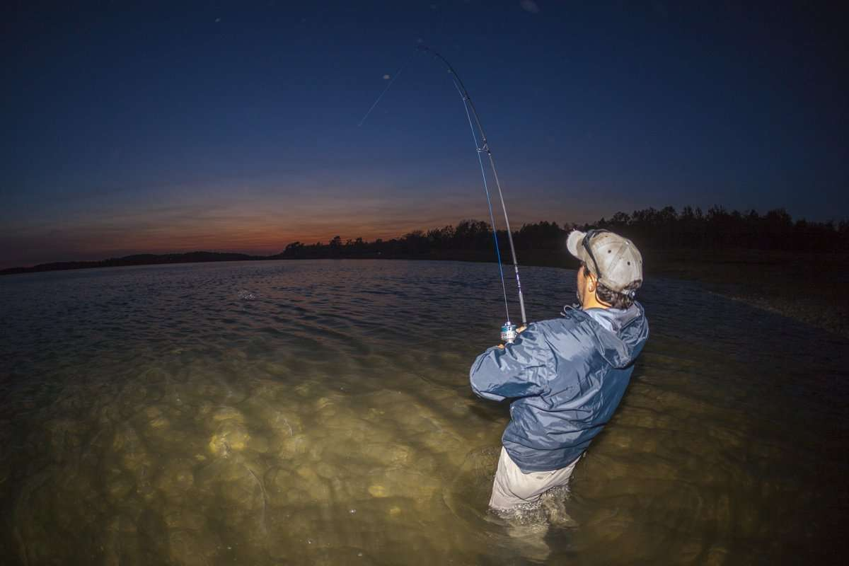 Surfland bait and tackle plum island fishing may 24 for Island fishing tackle