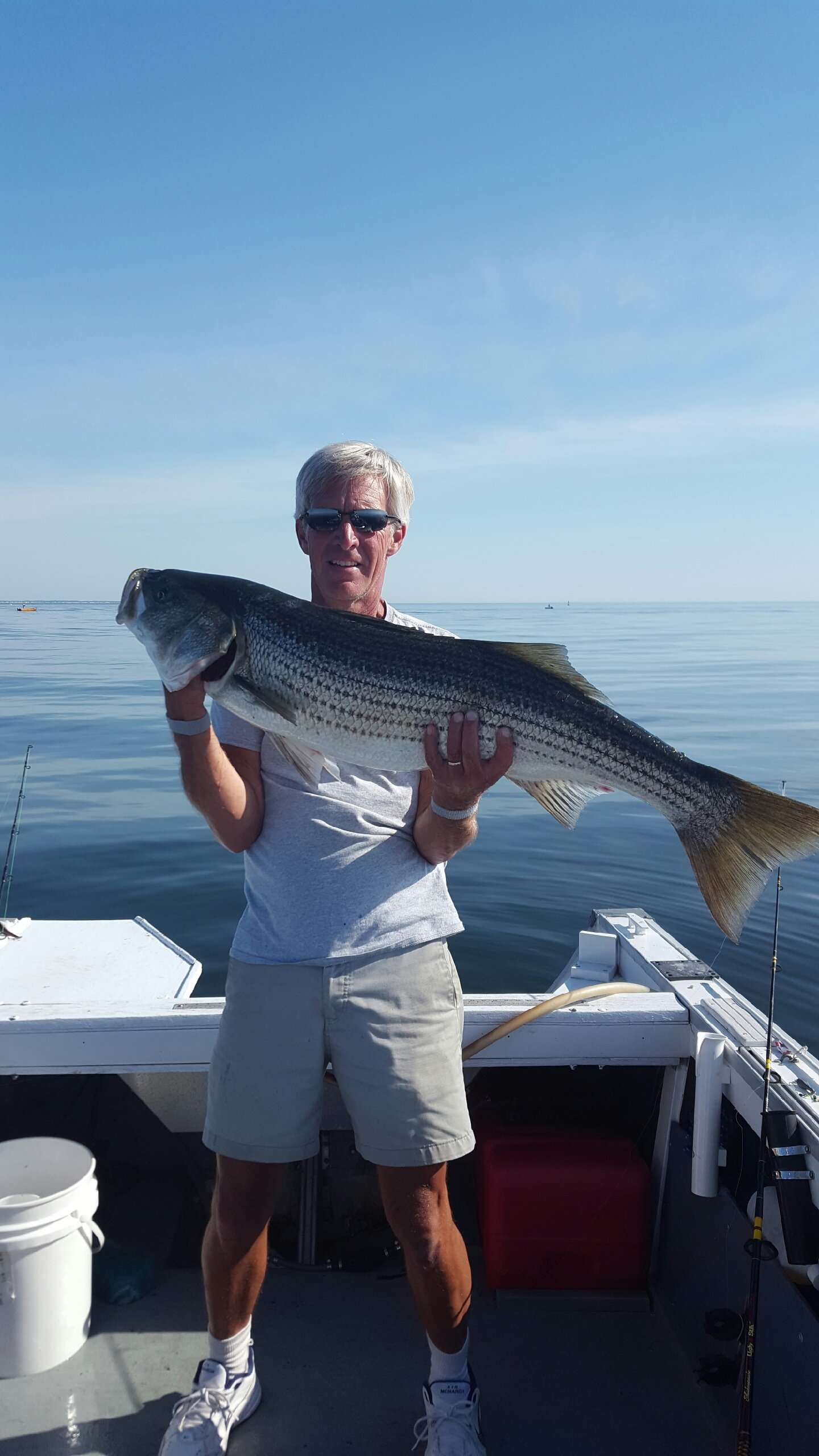 Surfland bait and tackle plum island fishing from surf for Island fishing tackle