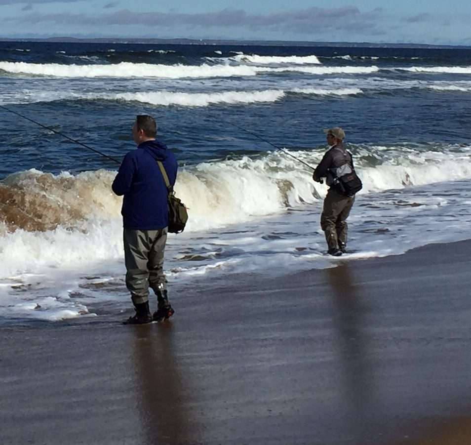 Plum Island Beach: Plum Island Fishing » Bromance