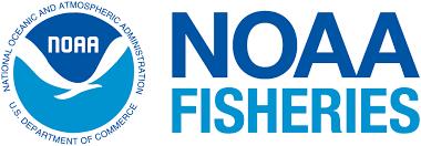 NOAA fish