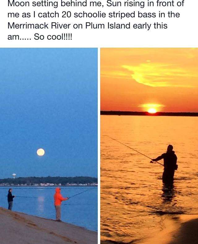 Surfland Bait and Tackle – Plum Island Fishing » May 26TH