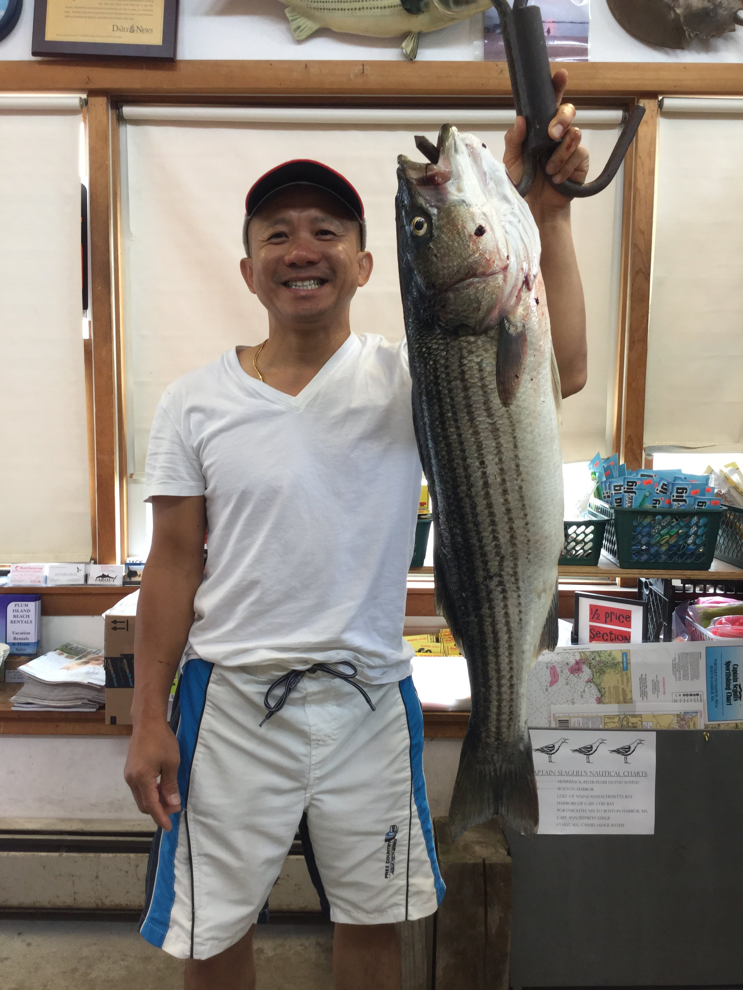Surfland Bait and Tackle – Plum Island Fishing » Shop Weigh-ins